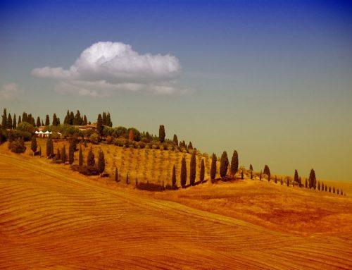 Alla scoperta delle suggestive colline senesi